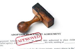 Surrogacy Adoption Agreement