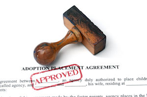 Surrogacy Adoption Agreement